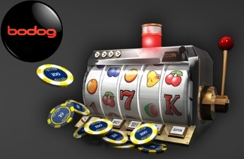 Bodog casino has one of the largest slots seletions.